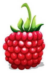 Fresh rasberry with green stem