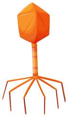 Virus cell in orange color