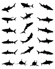 Black silhouettes of sharks, vector