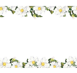 Seamless floral strip frame with white flowers. Watercolour border