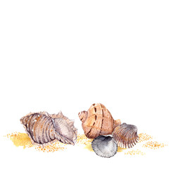 Watercolor painted background with sea shells in sand