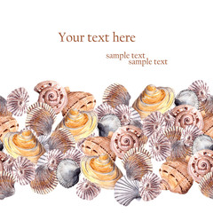Greeting card with seashells. Aquarelle