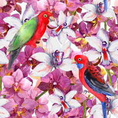 Spoed Fotobehang Aquarel Natuur Exotic floral pattern - parrot bird, blooming orchid flowers