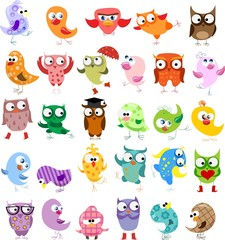 Set of vector cartoon birds