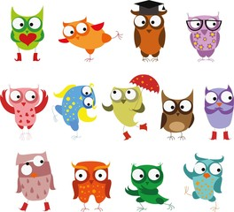 Set of vector cartoon birds owls