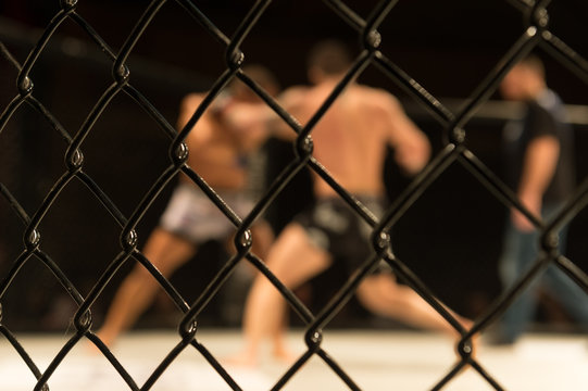 Combat en Cage
