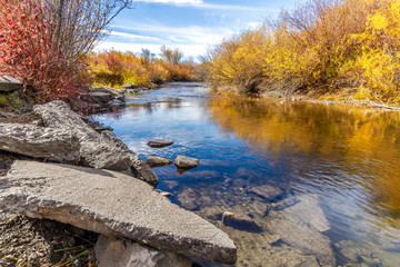 Cherry Creek Preserve