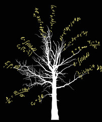 tree with yellow mathematical equations illustration