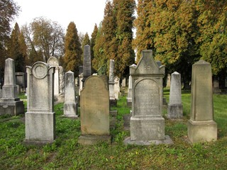 beautiful old tombstones on the jewish cemetery