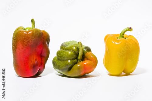 drei paprika in rot gr n und gelb in einer reihe stehend mit wassertropfen photo libre de. Black Bedroom Furniture Sets. Home Design Ideas