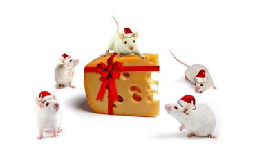mice Christmas gift