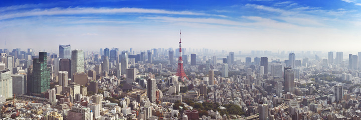 Spoed Fotobehang Tokio Skyline of Tokyo, Japan with the Tokyo Tower, from above