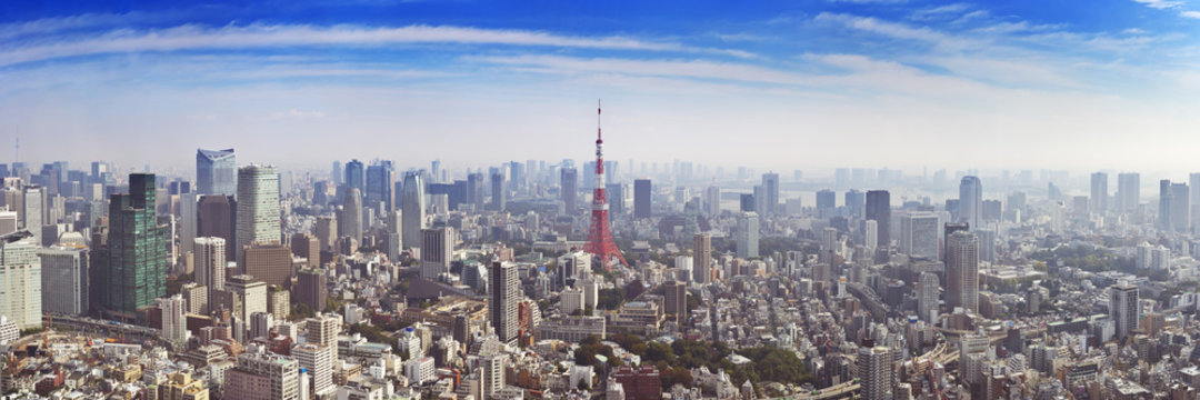 Skyline of Tokyo, Japan with the Tokyo Tower, from above