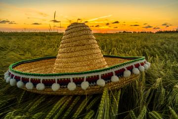 Sombrero auf einem Gerstenfeld bei Sonnenuntergang