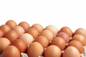 Chicken brown eggs in carton on white background.