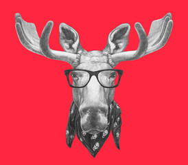 Portrait of Moose with glasses and scarf. Hand drawn illustration.