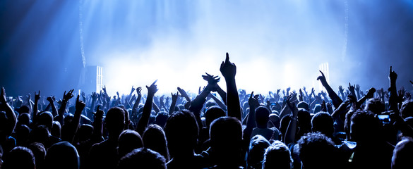 cheering crowd at a rock concert Wall mural