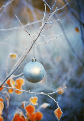 Christmas ball hanging on a tree branch in the winter forest