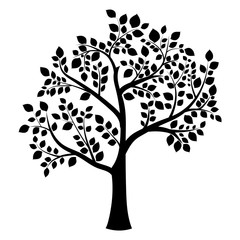 black silhouette of a deciduous tree on a white background