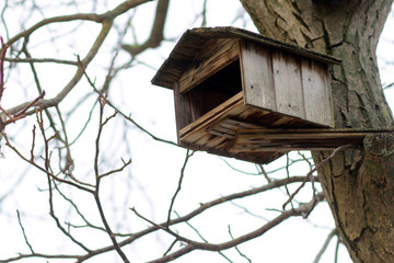 Small wooden birdhouse on tree