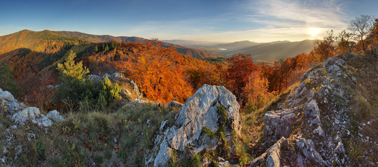 Autumn forest mountain panorama