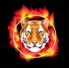 Tiger on fire