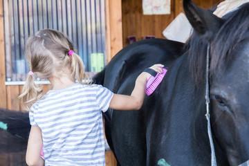Papiers peints Equitation Pferd striegeln