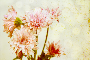 Pink flowers with an rusted antique textured background.