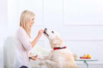 Pleasant woman having fun with a dog
