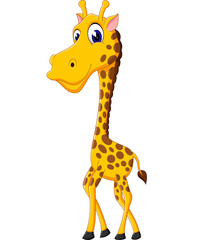 Cute giraffe cartoon of illustration