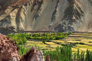 Ruins at Basgo Monastery, ladakh, India