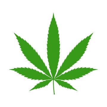 Cannabis (marijuana) hemp leaf flat icon for apps and websites