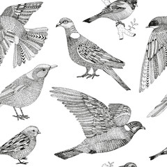 vector hand drawn seamless pattern with city birds