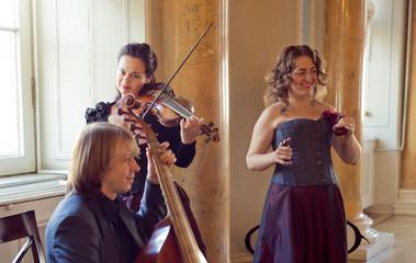 girl playing violin, string ensemble rehearsal - - viola da gambaб castanets
