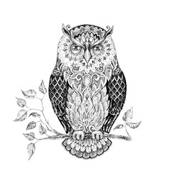 Drawing owl with beautiful patterns