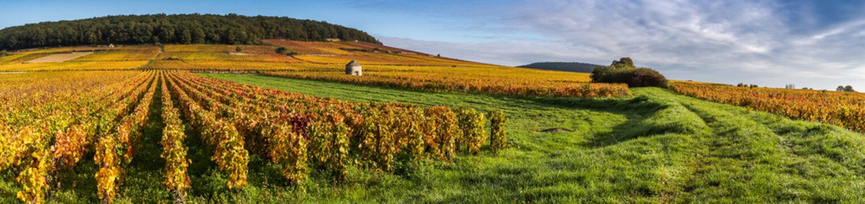 magnifique Bourgogne