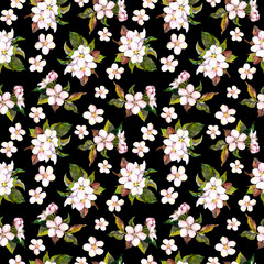 Seamless contrast floral backdrop with watercolour painted white apple or cherry flowers on dark black background