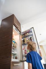 Bot looking at the fridge