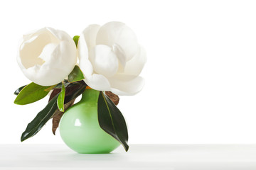 Magnolia Flowers Floral Magnolias Green Vase White Table