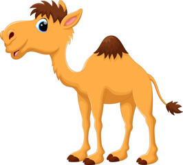 Illustration of cute camel cartoon