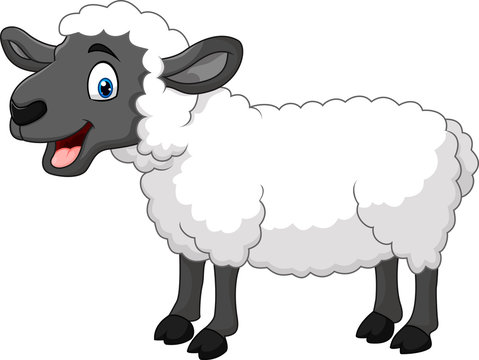 Cartoon happy sheep posing isolated on white background
