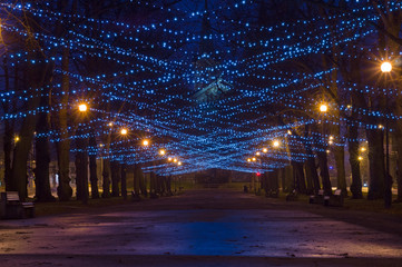 City boulevard decorated with New Year and Christmas illumination