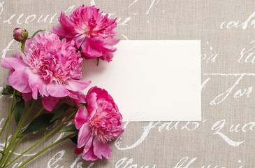 Pink peonies on grey background with handwritten words