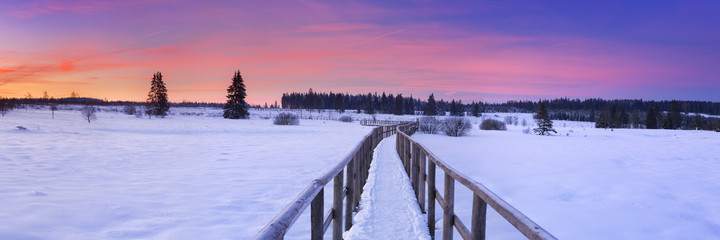 Boardwalk in the Hautes Fagnes, Belgium in winter at sunrise