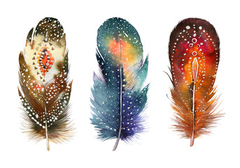 Hand drawn watercolor feather set.  Boho style. illustration iso Fototapete
