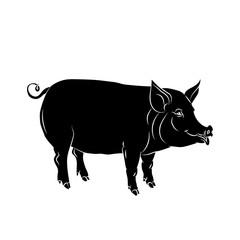 pig black  silhouette