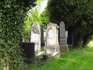 beautiful old tombstones on the jewish cemetery in spring