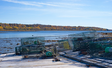 Lobster traps on tilted floating dock