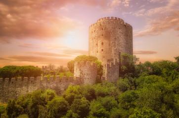 Rumeli Fortress  at Istanbul,Turkey Wall mural