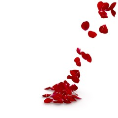 Petals dark red rose flying on the floor